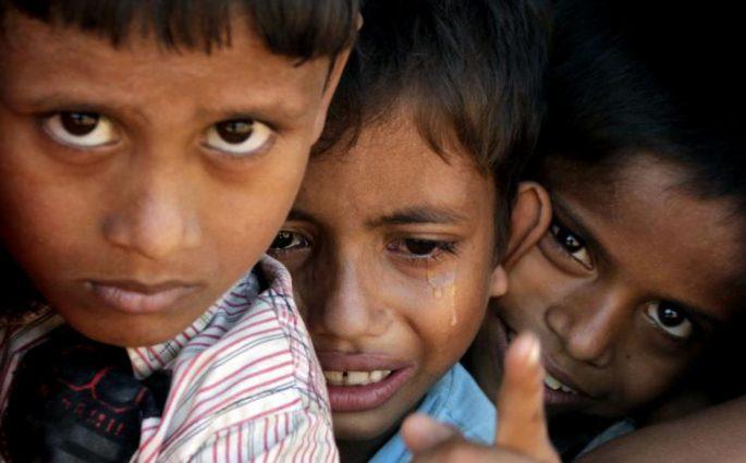 গাছের ছায়ায় ছাওয়া সবুজ চা বাগান। পুকুরিয়া, বাঁশখালী, চট্টগ্রাম, ২৭ অক্টোবর। ছবি: হিমেল বড়ুয়া
