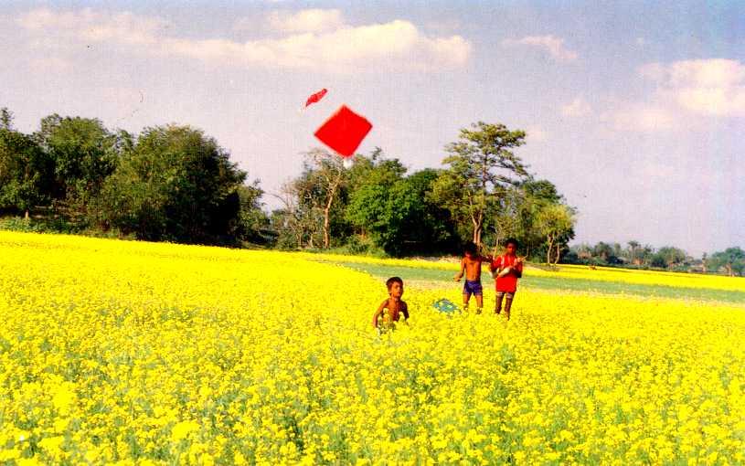 জিএম শাহাবুদ্দিন'র কবিতা রূপের যাযাবর