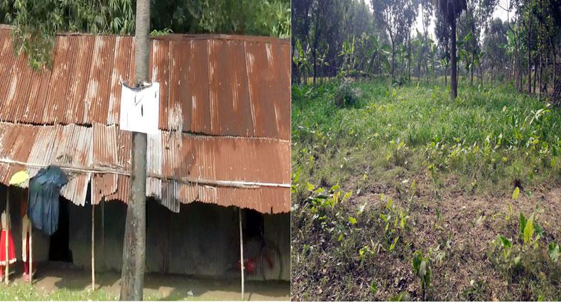 এমপিওভুক্তির ৮দিন পর চলছে স্কুলঘর নির্মাণের প্রস্তুতি