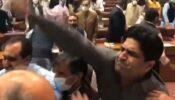 হট্টগোল-হাতাহাতিতে পণ্ড পাকিস্তানের বাজেট অধিবেশন