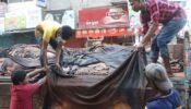 অনুমতি পেল ৫ প্রতিষ্ঠান, ওয়েট-ব্লু চামড়া রফতানির